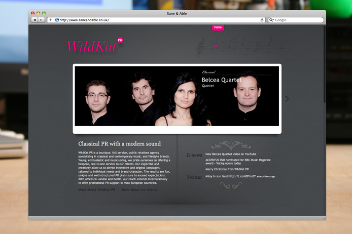 WildKat PR website design