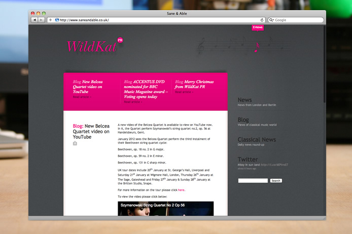 WildKat PR wordpress